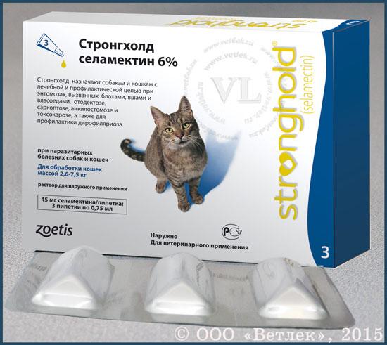 стронгхолд для кошек через какое время подействует