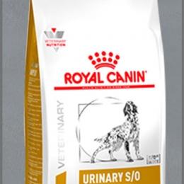 Royal Canin Sterilised 37 корм для стерилизованных кошек с
